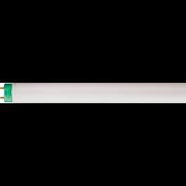 LÂMPADA FLUORESCENTE TUBULAR T8 OSRAM 36W 6500K (BRANCA FRIA)G13 L/765